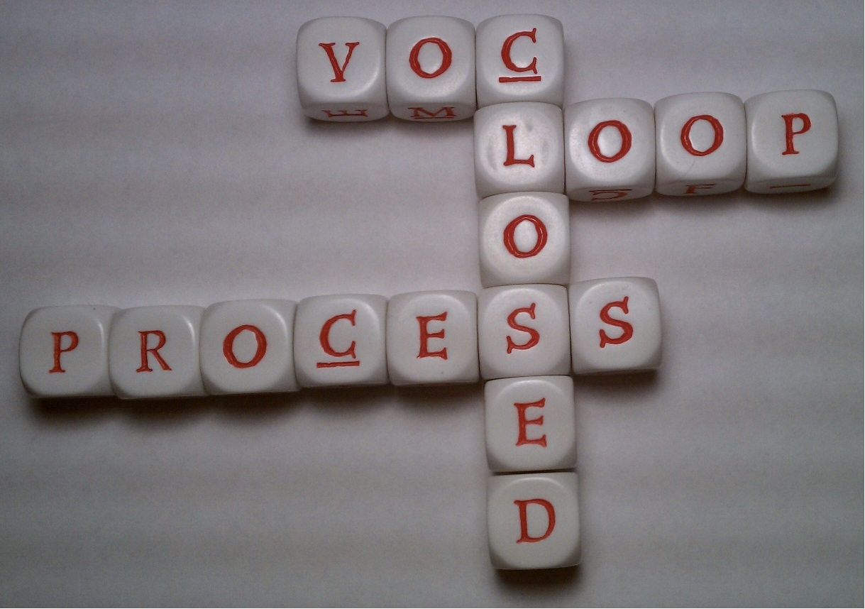 VOC_Closed_ Loop_Process_ Crossword